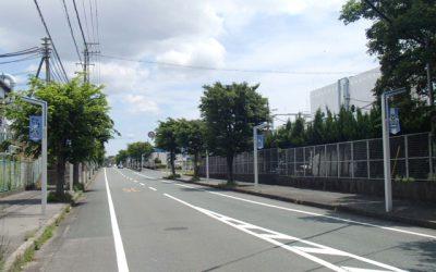 磐田袋井線歩道照明